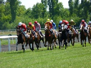 horse racing matched betting